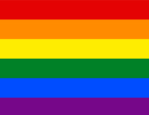 dia internacional contra la homofobia madrid